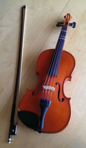 My Rental Violin