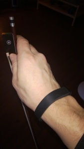 Fitbit with Bow